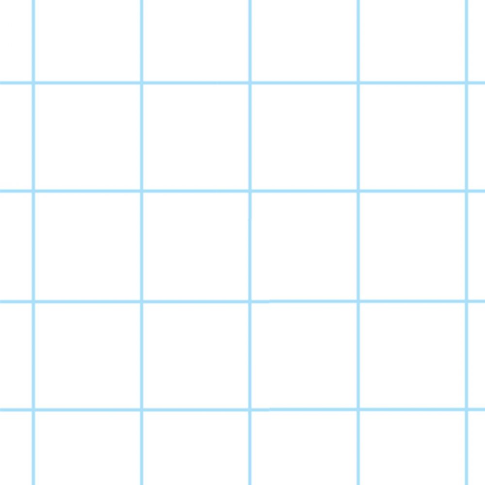 A4 Exercise Paper 10mm Square 2 Hole Punched